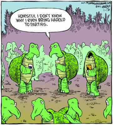 Social Anxiety Turtle